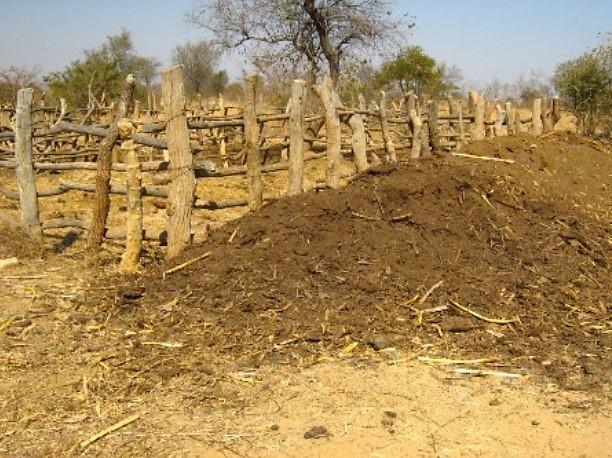 Figure 2. Farmers use prepared livestock manure to fertilise fields and gardens