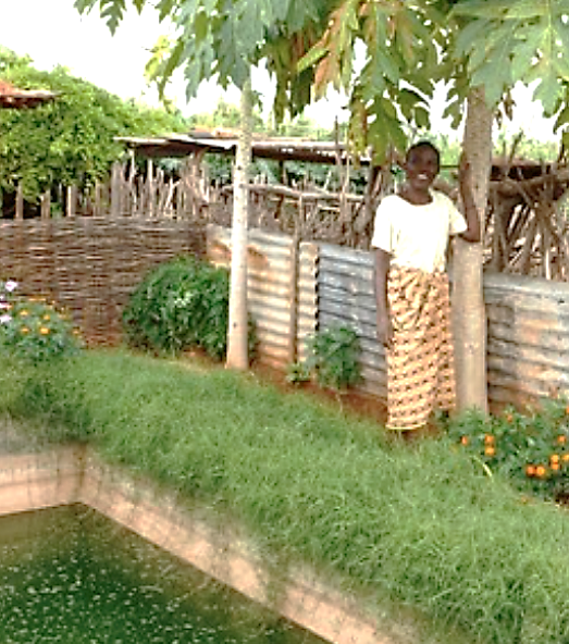 Figure 3. Garden and fish pond production in homesteads (photo form European Commission 2015)