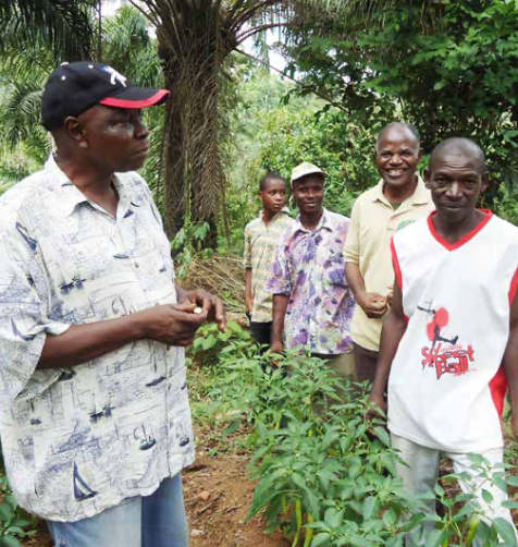Figure 3: Farmer demonstration of the cultivation, propagation and management of afang (UNEP 2017)