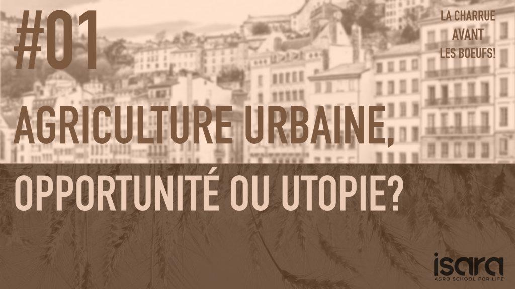 Agriculture urbaine Opportunité ou utopie ?